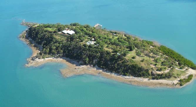 Turtle Island Gladstone