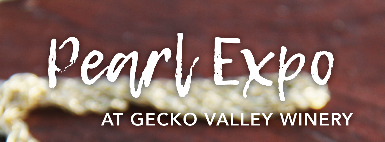 Gecko Valley